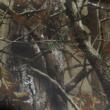 Kép 2/2 - Vadász vászon, tölgyfa mintás